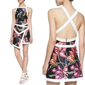 Cameo Fire Start Floral Dress with Contrast Trim